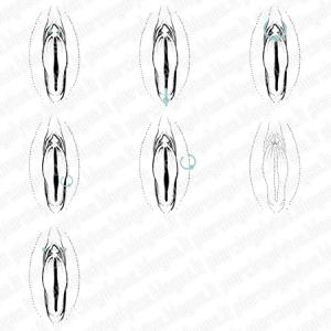 Male Female Genital Piercing